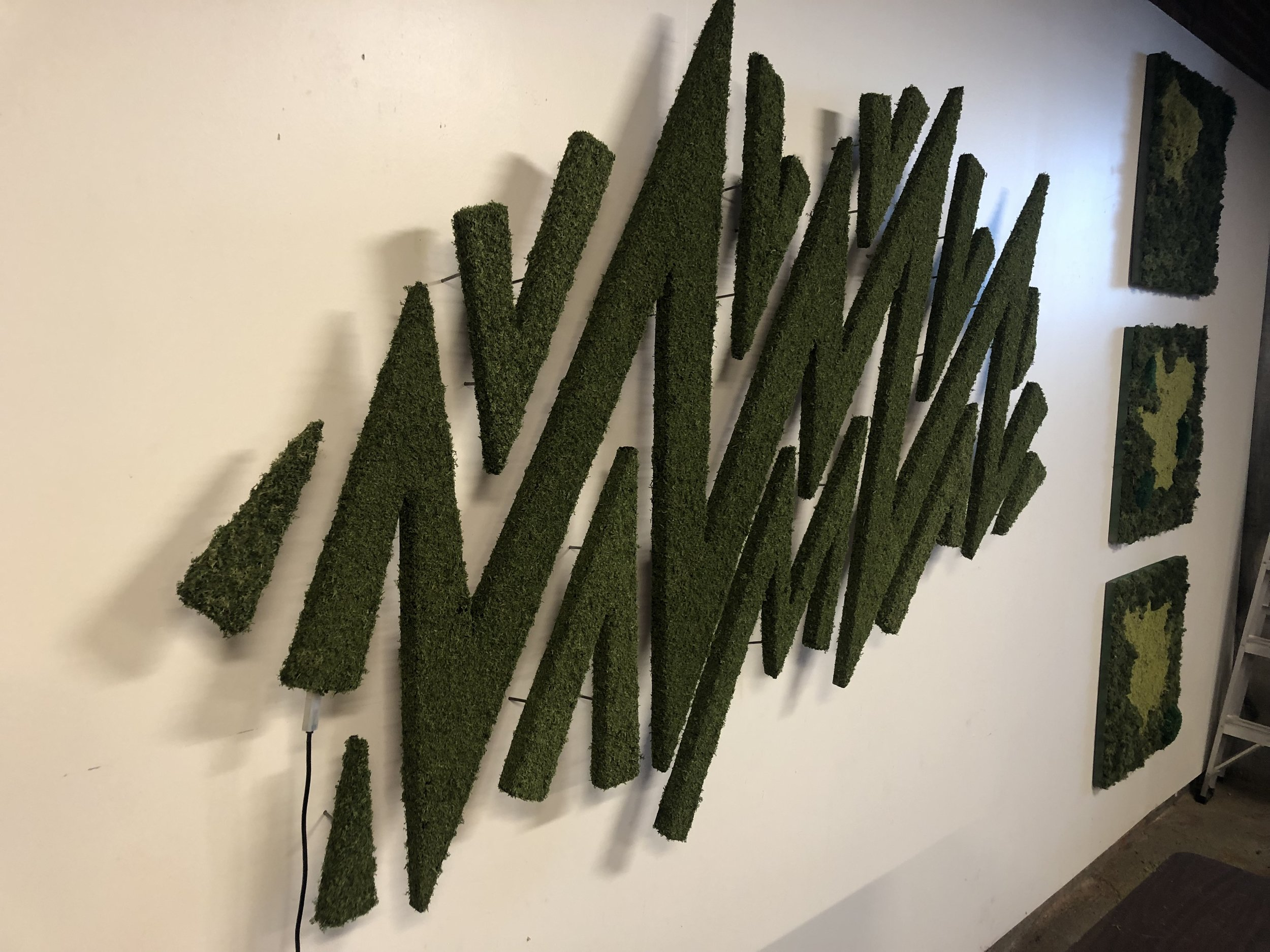 Custom moss artwork on display at the Urban Planting Cleveland studio shop. Fun fact: it lights up in many different ways!
