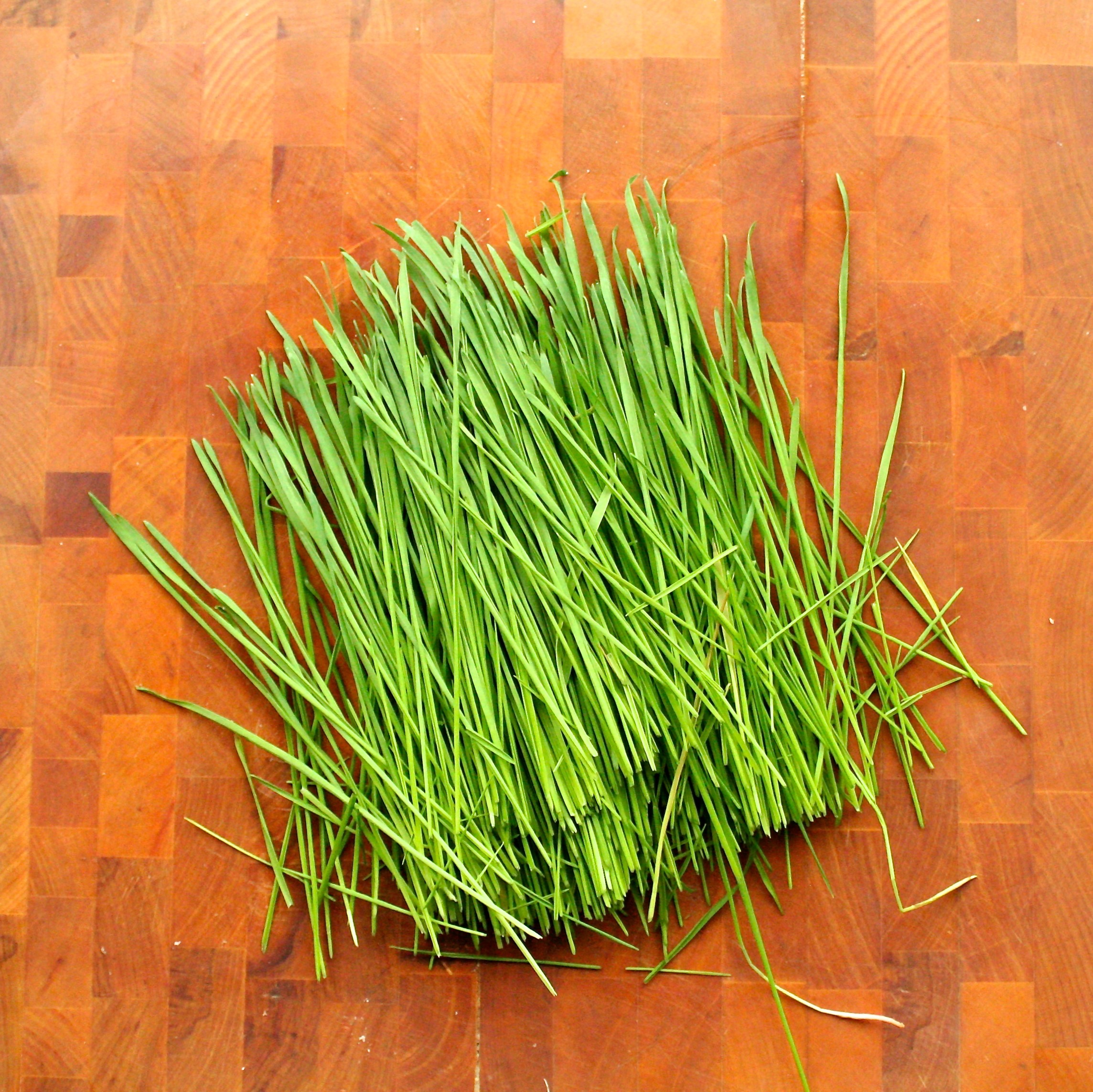 Wheatgrass Juice - Chopped.jpg