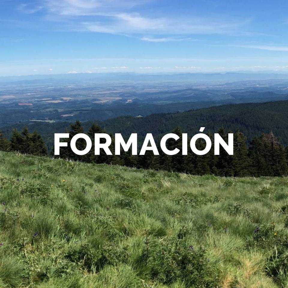 2 FORMACION.png
