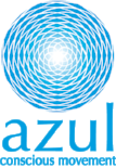 Azul Logo + ACM Blue.png