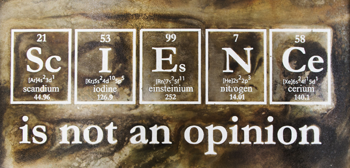 framded opinion crop.jpg