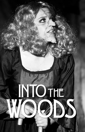 Into the Woods-M.jpg