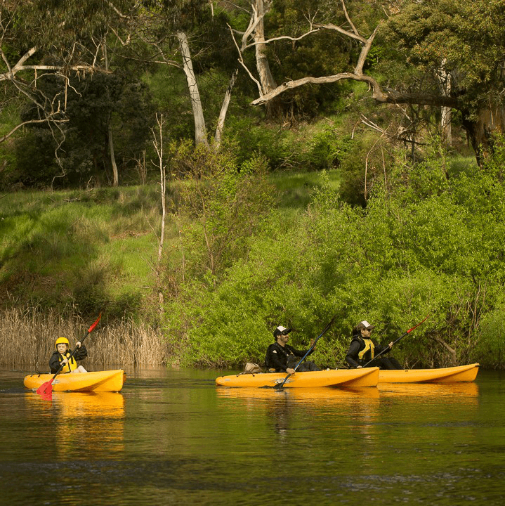 Tassiebound Adventure Tours - Tassie Bound is a Tasmanian adventure kayaking tour business specialising in day kayak tours on the Derwent River, Huon River and Lake Pedder in the Southwest National Park.