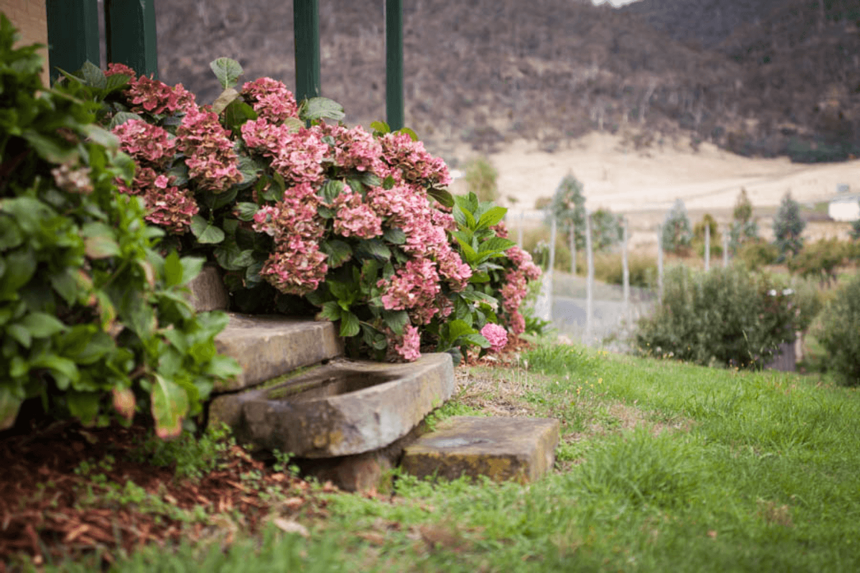 New Norfolk Accommodation  | Hobart Accommodation | Stanton Farmhouse