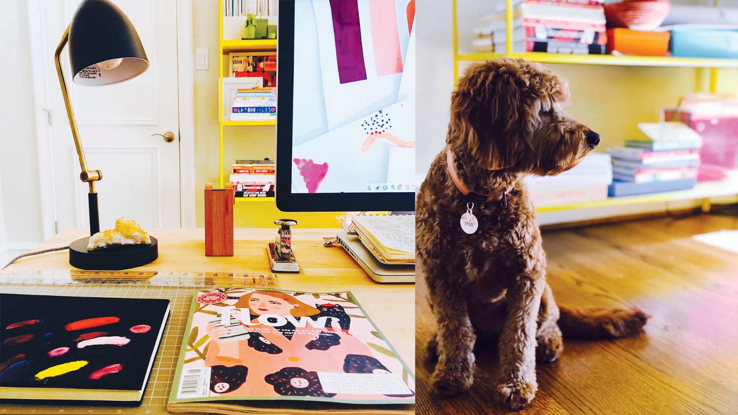 a close up of my desk, some of my favorite supplies + my office mate, Lolo.