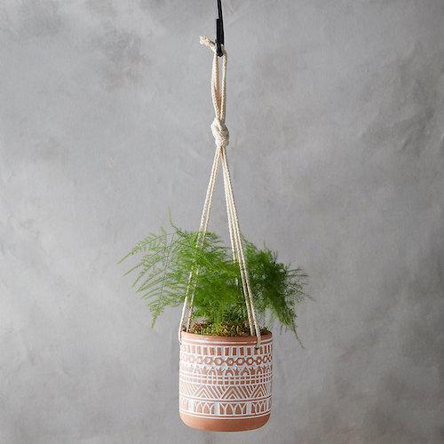 planter.jpeg