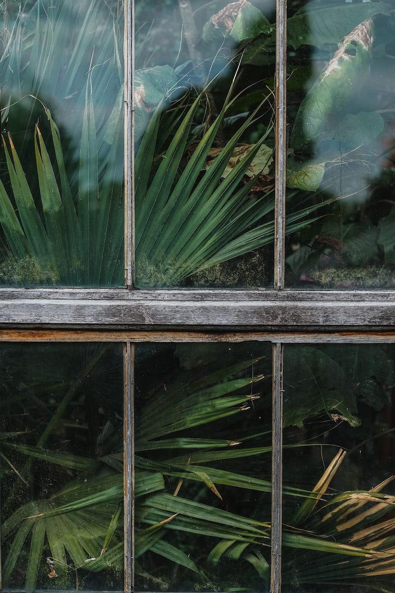 Cambridge-Botanical-Garden-Hills-Road-Entrance-Photographer-Craig-Whitehead.jpg