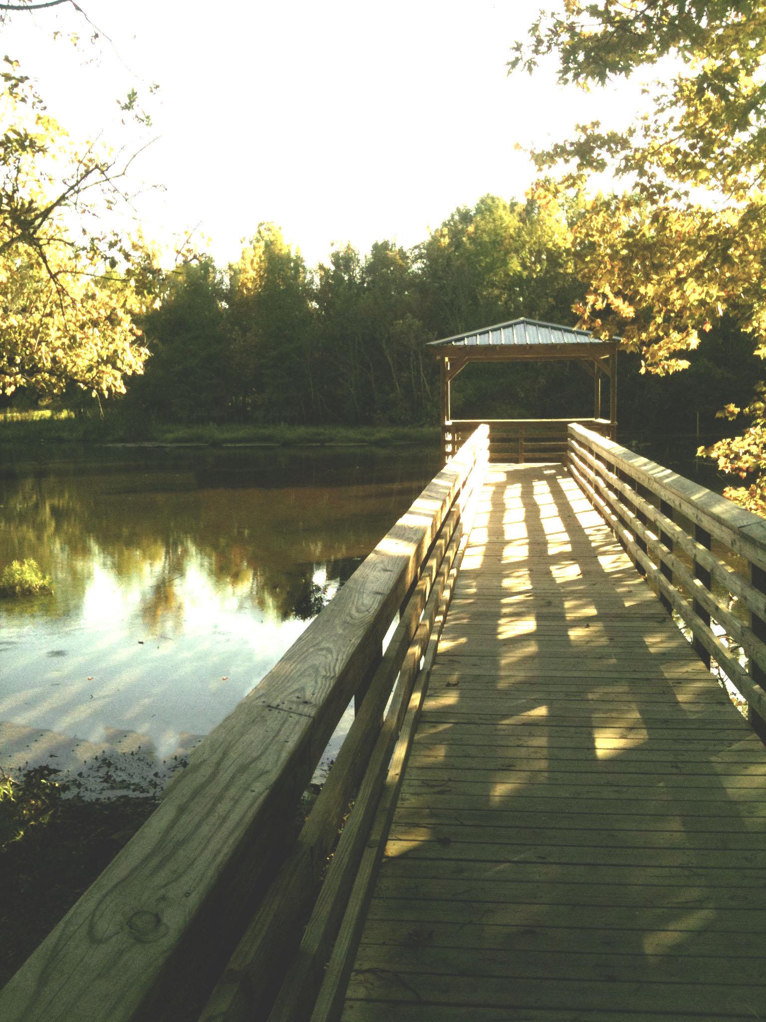 Outdoors photo 1.jpg