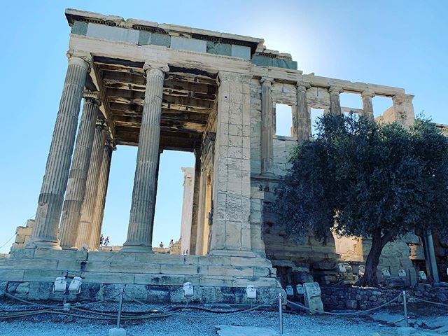 We are in Athens! Dropped the luggage at the hotel and headed straight for the acropolis since it was about 9 am and they say to go early! Just got back the hotel after lunch and exploring for a bit. Now to rest by the pool for a bit! #athens #greece #acropolis #travel #explore #ancient #greek #historical #wander