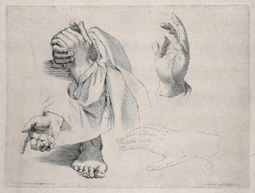 1187px-Hands_in_various_gestures,_including_prayer_and_benediction._Wellcome_V0009413.jpg