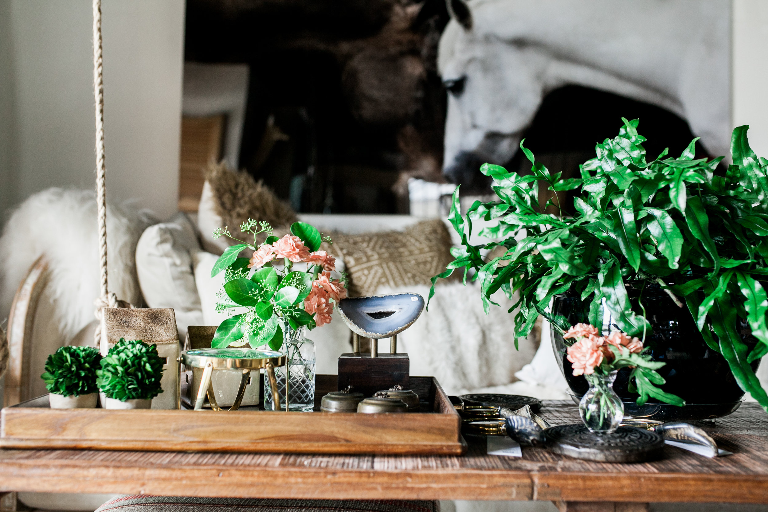 Decorative table items and plants.