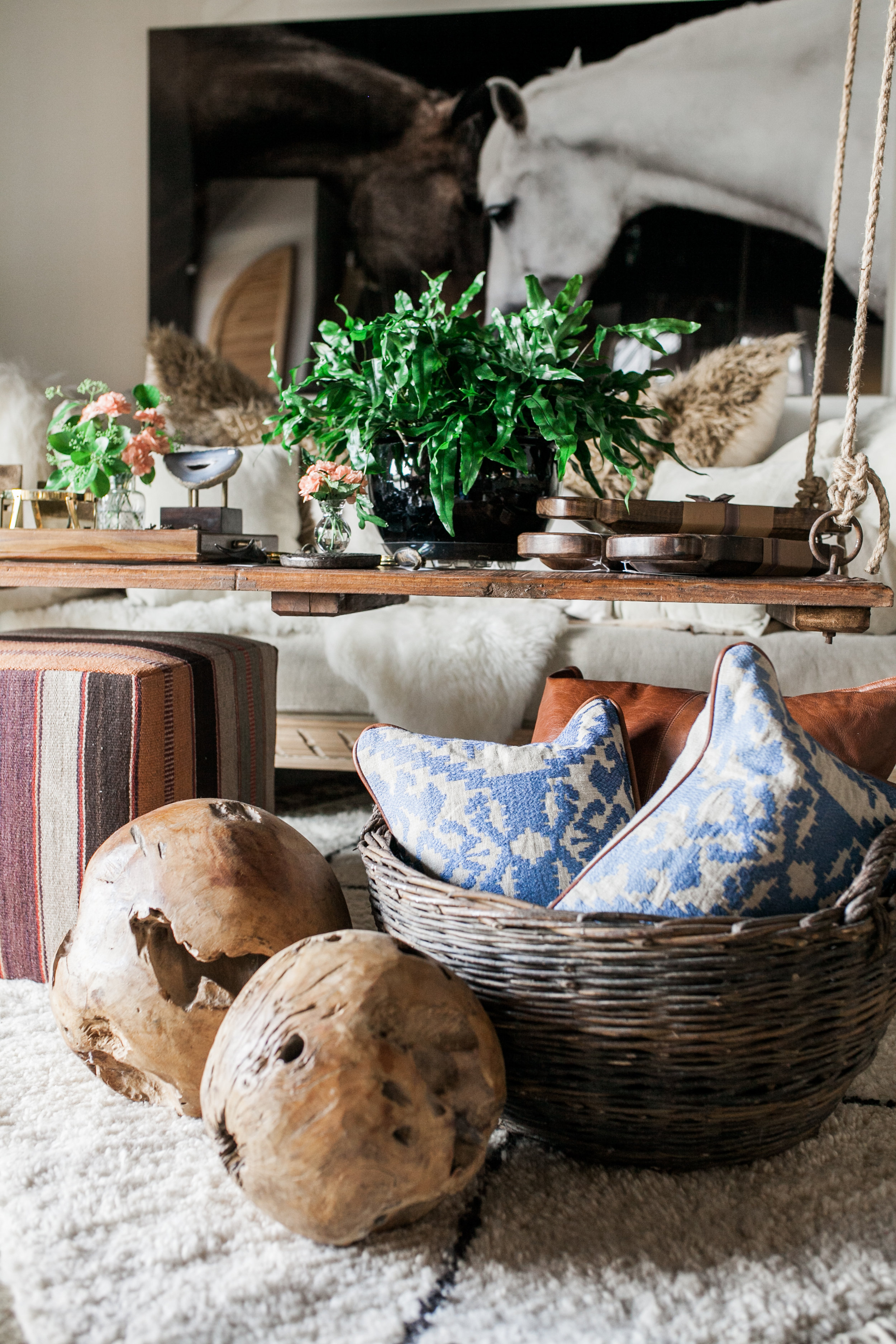 rugs pillows and decor.jpg