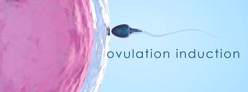 Gen-5-Fertility-Infertility-Treatment-ovulation-induction.jpg