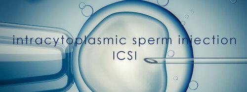 Gen-5-Fertility-Infertility-Treatment-intracytoplasmic-sperm-injection-ICSI.jpg