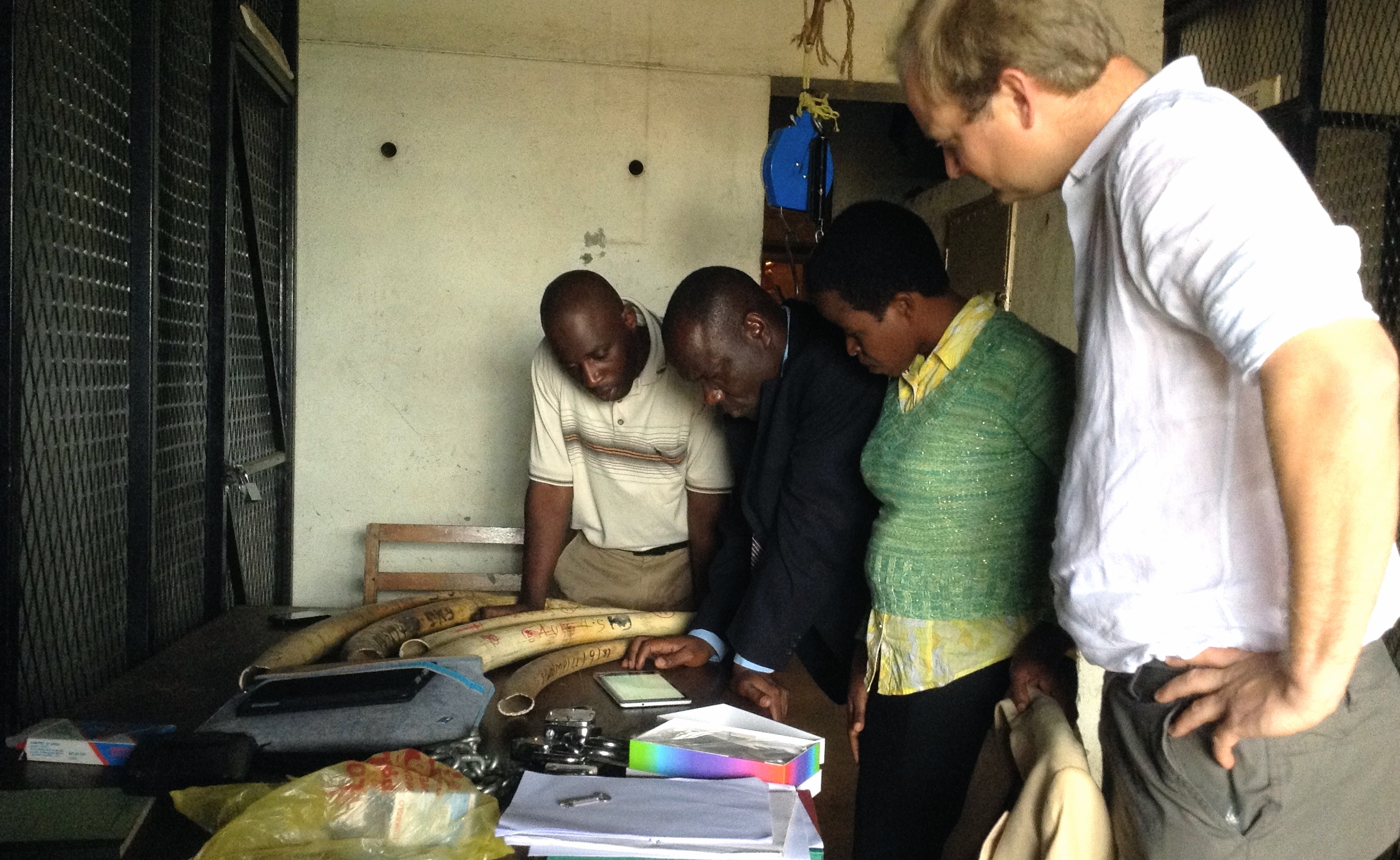 Ivory inventory in Malawi- February 2016