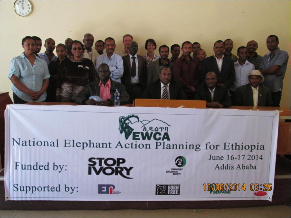 Ethiopia's NEAP Workshop on Addis Ababa- April 2014