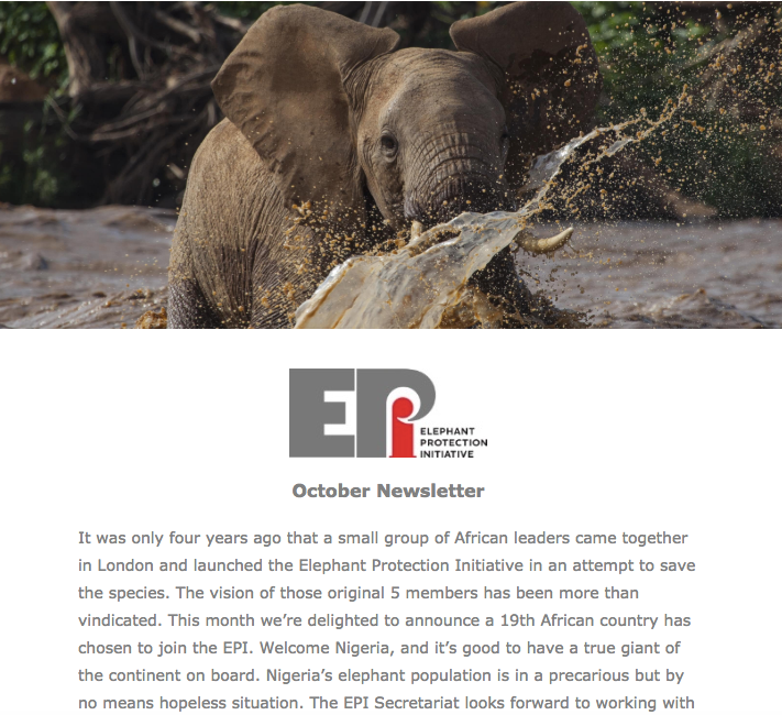 EPI Newsletter: Oct 2018 - With the Illegal Wildlife Trade Conference returning to London, we look ahead to what we want to achieve through the EPI Consultative Group meeting. With updates from Chad and the crucial work of anti-poaching units in unprotected areas, Angola's wildlife crime 'hotline' and the CITES Standing Committee meeting in Sochi.