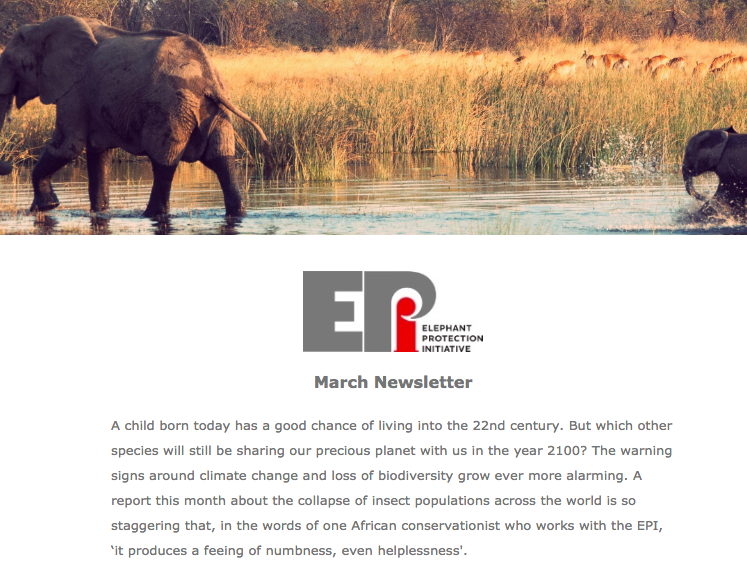 EPI Newsletter: March 2019 - As we become increasingly aware of the global loss of biodiversity, we look at how elephant conservation can promote environment and species protection. Includes developments in Nigeria and an EPI workshop on securing national ivory stockpiles, highlighting the crucial role wildlife product management plays in addressing the illegal wildlife trade.