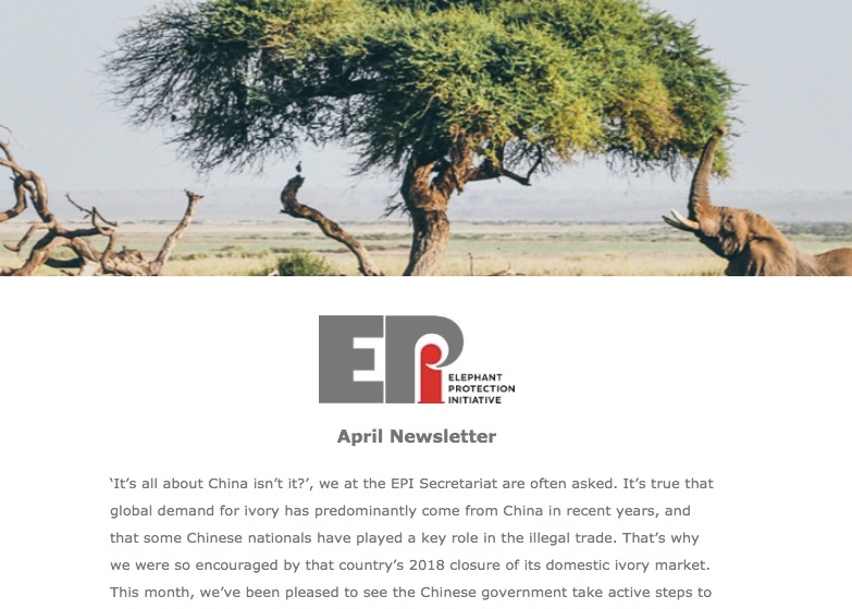 EPI Newsletter: April 2019 - 'It's all about China isn't it?' We look at the changing role of China in the illegal ivory trade, and take a look at history for the long view. Updates include First Lady Margaret Kenyatta joining the EPI Foundation Board, Ethiopia's NEAP Coordination Meeting, and Nigeria's elusive elephants.
