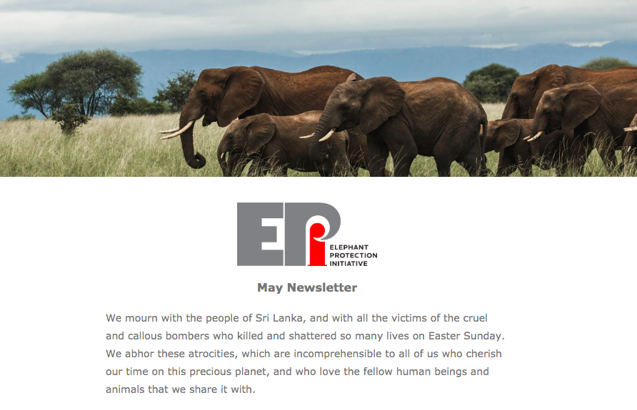 EPI Newsletter: May 2019 - With the postponement of CITES CoP18, we look beyond the ivory trade, to the future enduring issues threatening elephants survival in the wild. Updates include crucial work to collar some of the last surviving elephants in Chad, and audits of the storage of ivory in Malawi.