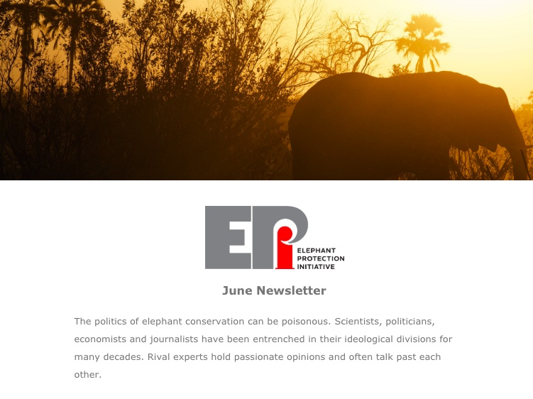 EPI Newsletter: June 2019 - This month we ask, 'is the tide turning for elephants?' There isn't a precise answers, but a recent report helps shed some light. Updates include management of ivory stockpiles in Gabon and Uganda, and key meetings with the Cabinet Secretary of Kenya.