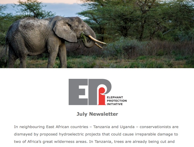 EPI Newsletter: July 2019 - How controversial projects in Tanzania and Uganda are severely threatening two of Africa's great wilderness areas. News from the EPI Foundation on the appointment of a CEO, and the latest on collaboration with the Nigerian government.