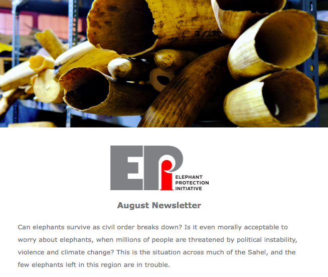 EPI Newsletter: Aug 2019 - How the elephant populations of the 19 EPI countries in Africa are incredibly diverse, in all sorts of ways, and the serious threats still facing many. With ivory management updates from Angola, and India, and a Nigerian EPI Friend of the Month.
