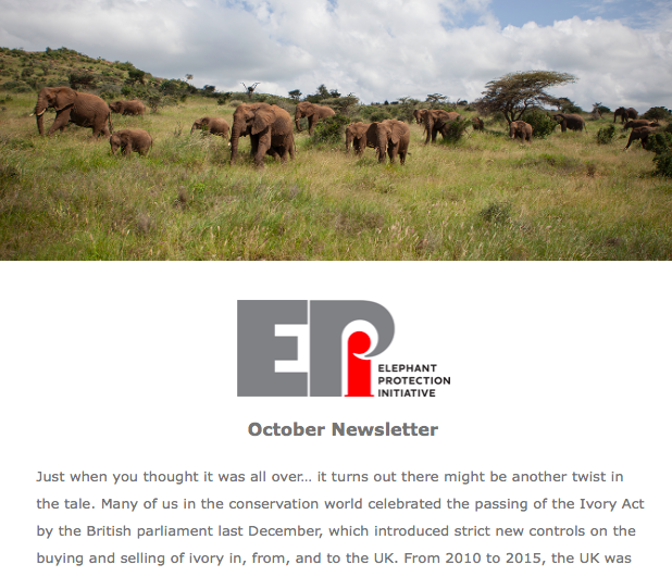EPI Newsletter: Oct 2019 - Is the UK Ivory Act under threat? John Scanlon's thoughts on the disagreements at CITES.  We hope you enjoy, please do forward it on to those who might be interested.