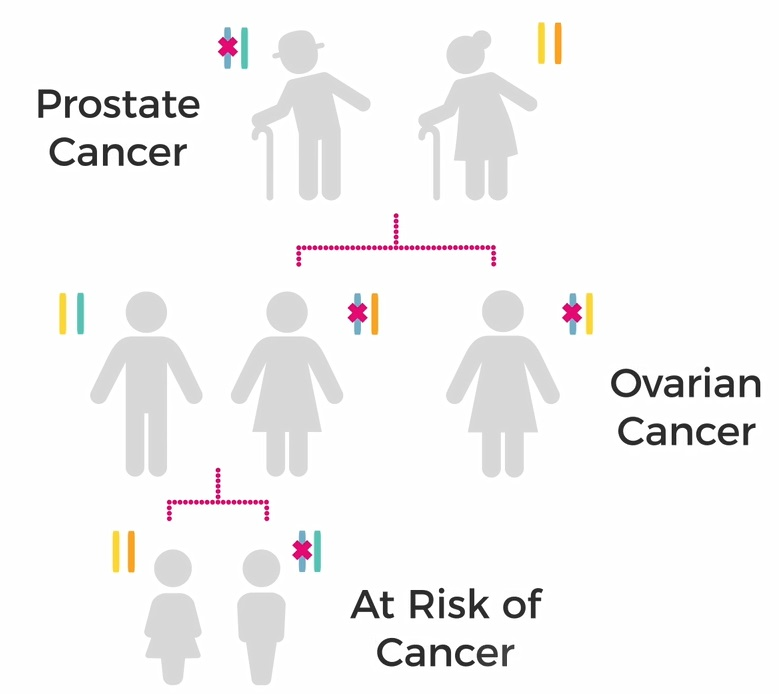 cancer is genetic but not inherited)