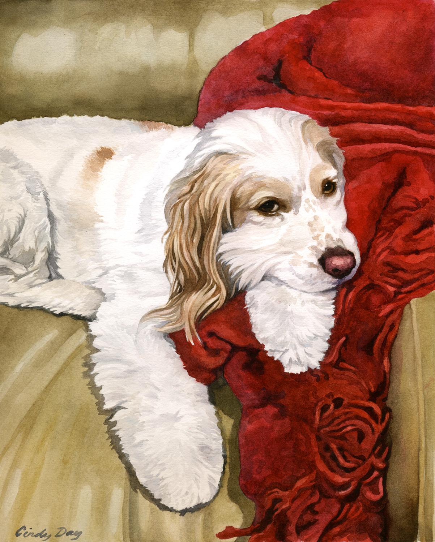 Bailey - 8 x 10 Watercolor