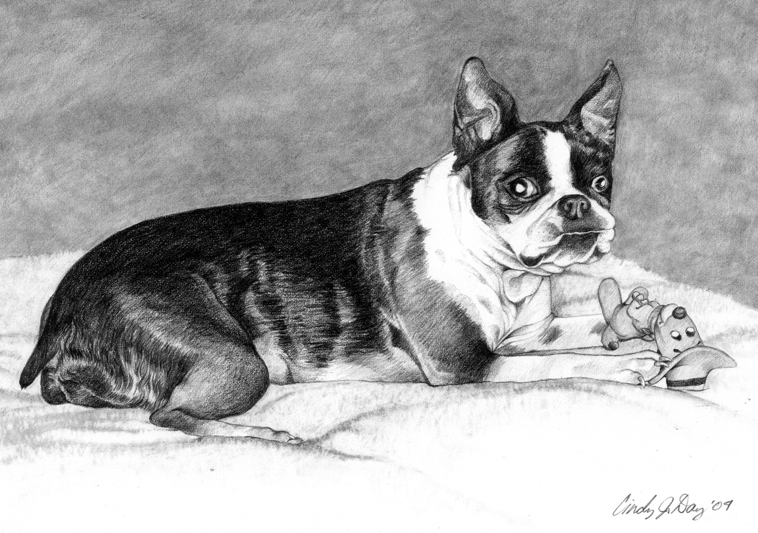 Bailey - 8x10 Pencil Drawing