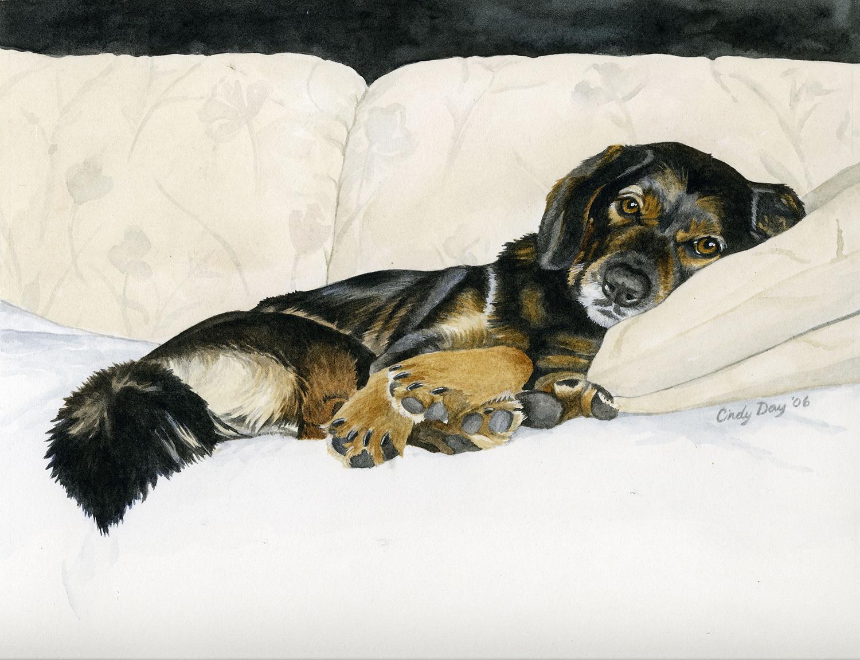 Hunter 8 x 10 Watercolor