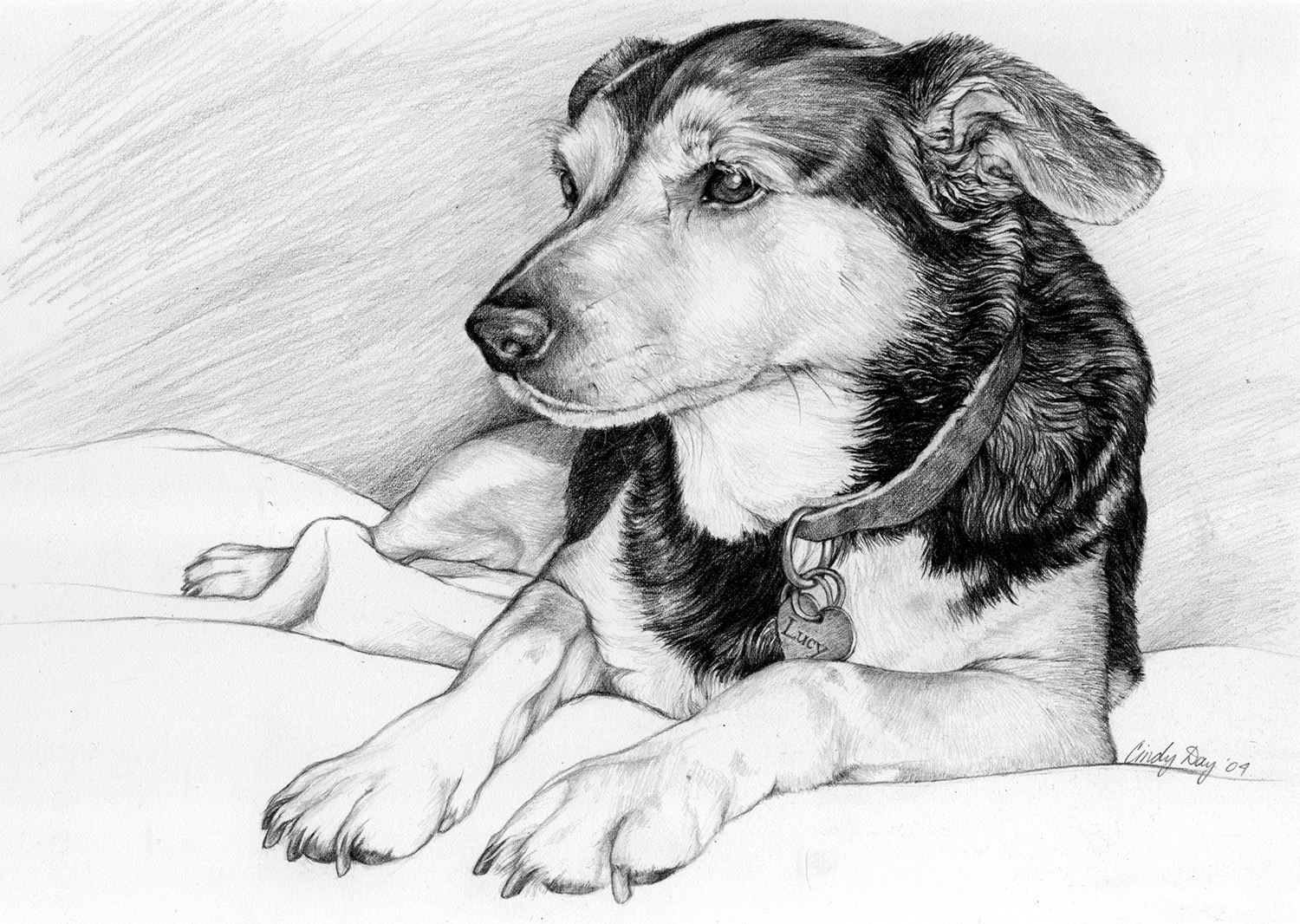 Lucy - 8x10 Pencil Drawing