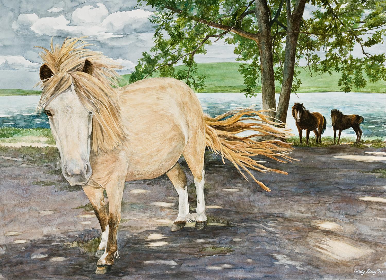 Miniature Horses in Dappled Sunlight