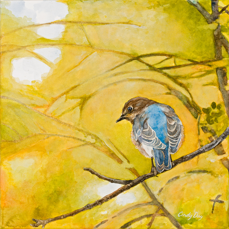 Bluebird in Gold
