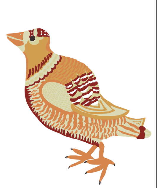Bird Illustration Veronica Rowlands