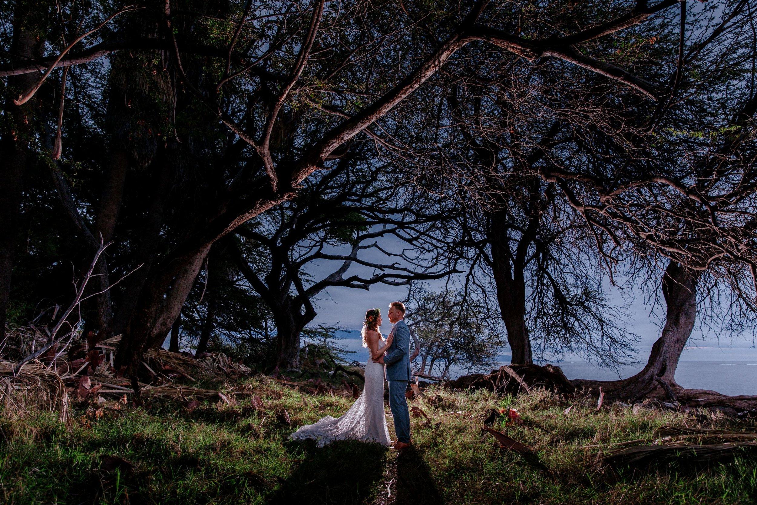 Chris-J-Evans-maui-wedding-JA3700-Edit.jpg