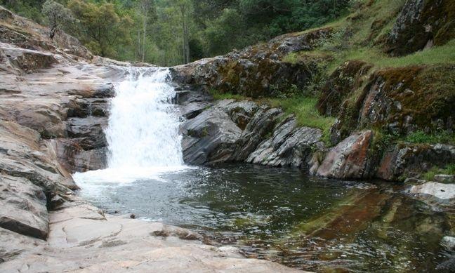 paradise-creek.jpg