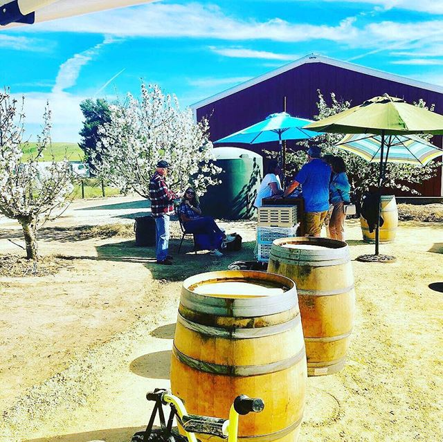 We offer exquisite wines from small venues in Central California Coastal area. Come stay with us! We go the extra mile to satisfy our guests! #thecampfirelife #sequoianationalpark #kingscanyonnationalpark #hiking #fishing