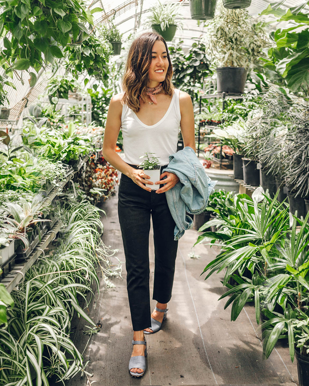 All About Plants + How to Take Care of Them 2 - Om & The City Blog.jpg