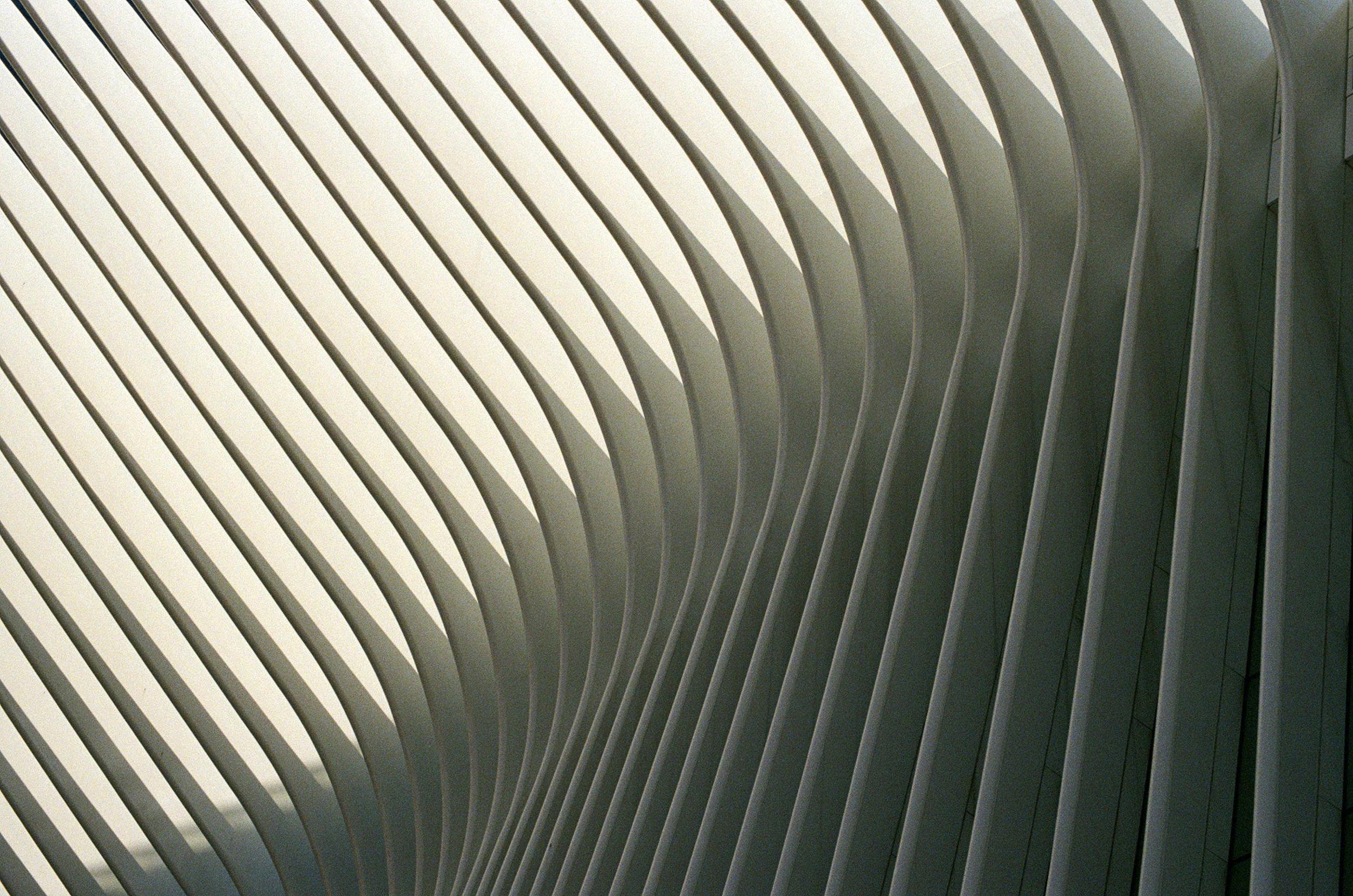 New York, 2018.  35mm.