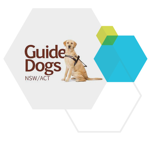 Forum-image-about-Guide-dogs.png