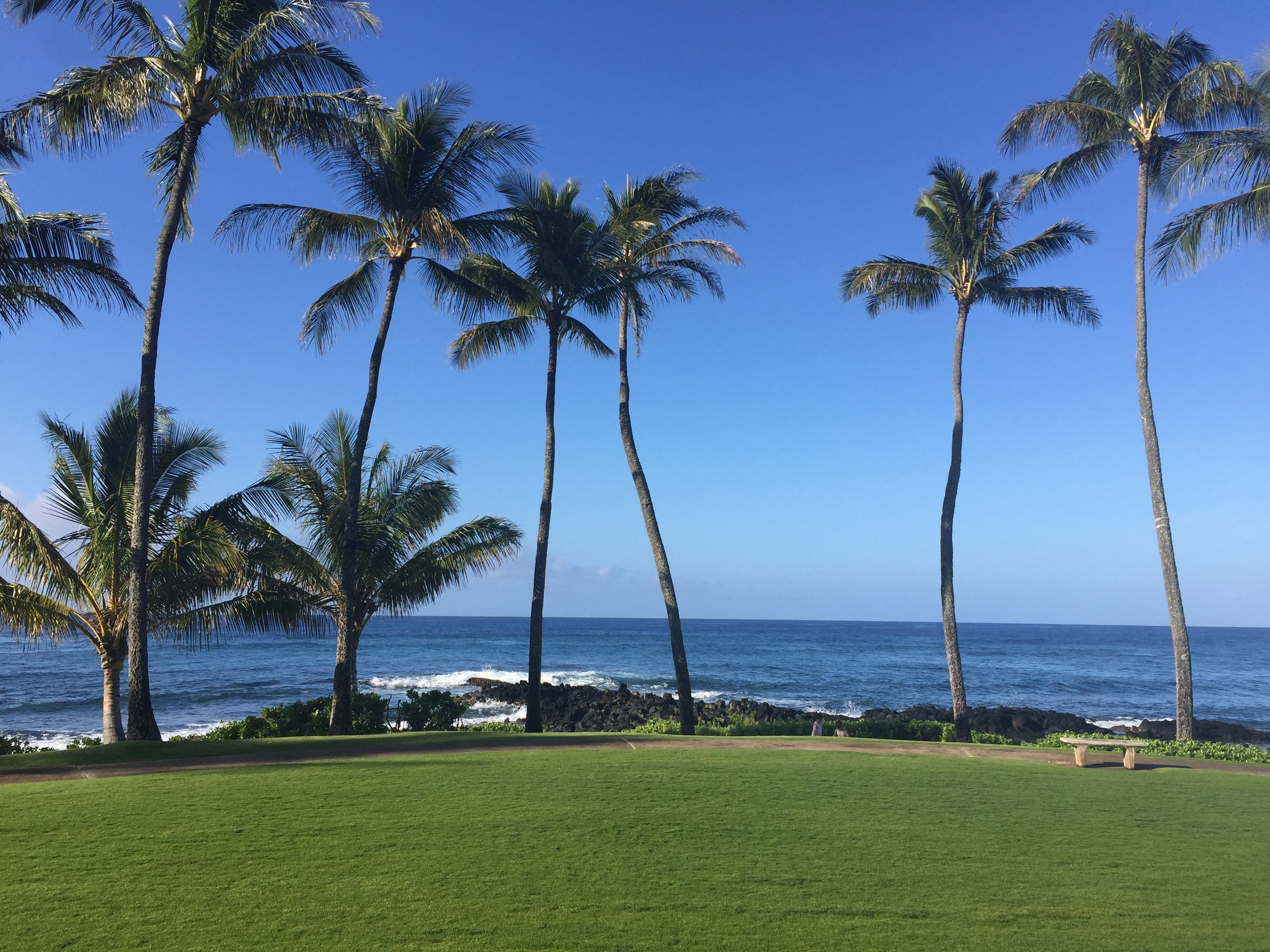 My happy place. The Sheraton Poipu Beach where I wed the love of my life.
