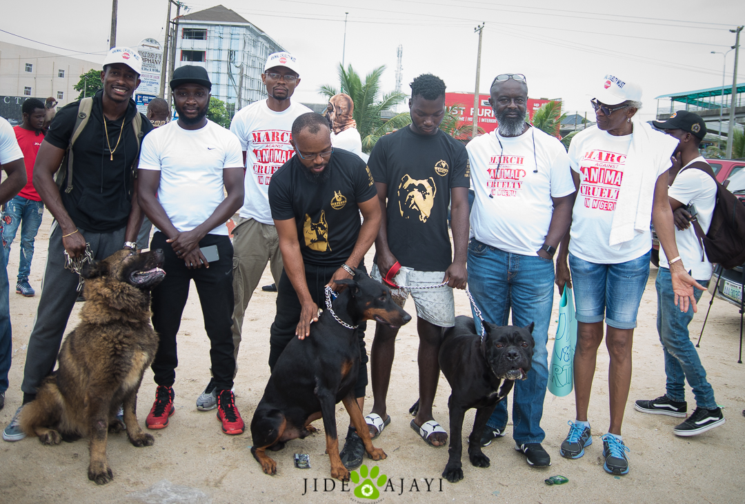 """""""Apart from being a pet photographer, I belong to a group of like minded people in the pet community in Nigeria who believe and advocate for responsible pet ownership. We have two vets who run dog shelters in Lagos, Nigeria, dog trainers, handlers, lovers, enthusiast, owners and even breeders."""""""