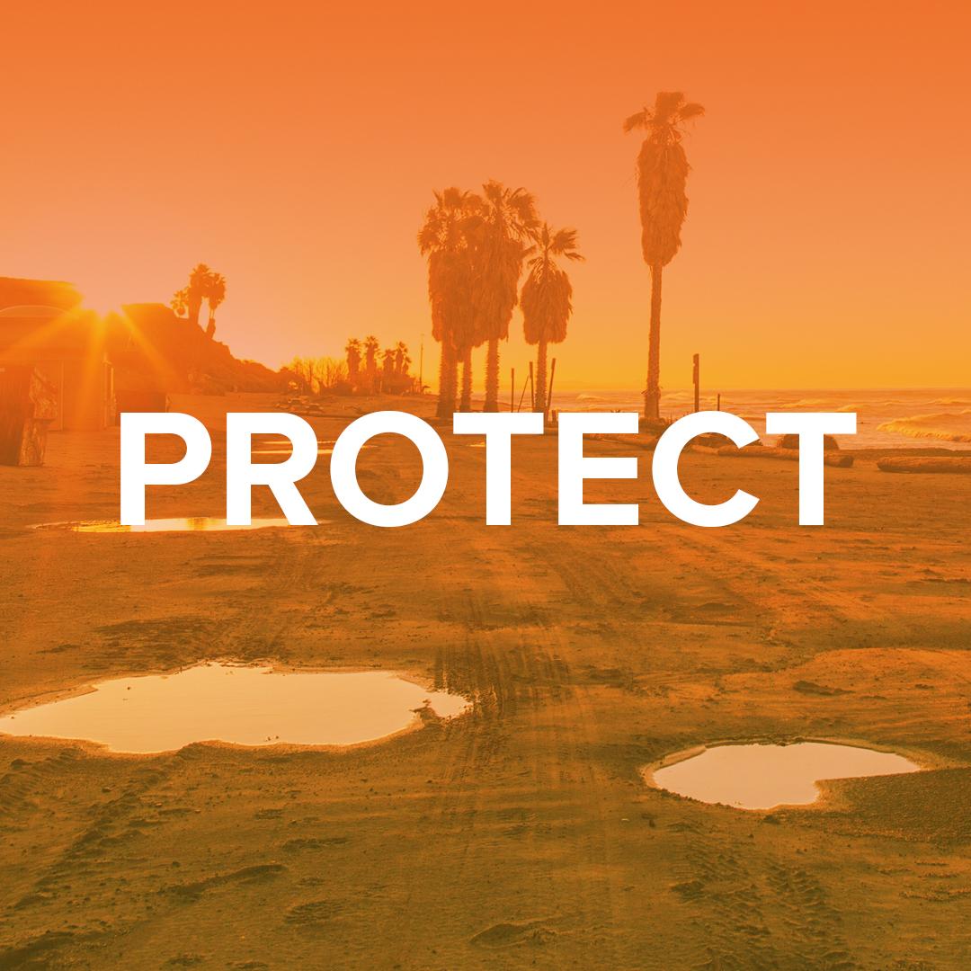 PROTECT_2.jpg