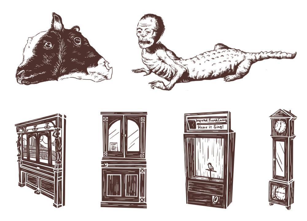 marsh-illustrations.jpg