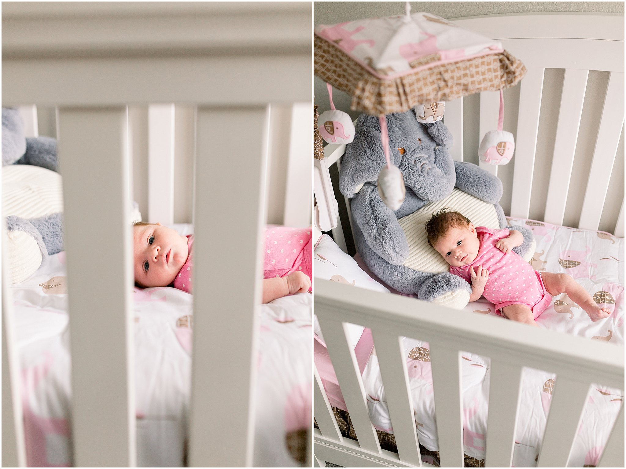 Winter-Garden-Maternity-Newborn-Photographer_0019.jpg