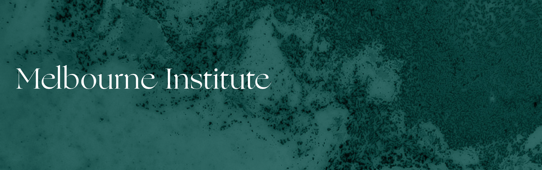 MelbourneInstitute_Image.png