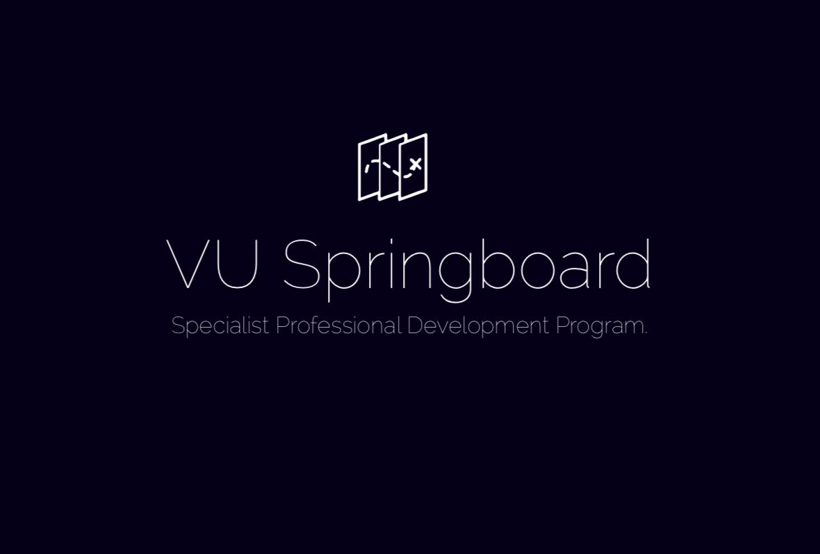 springboard visuual 2.png