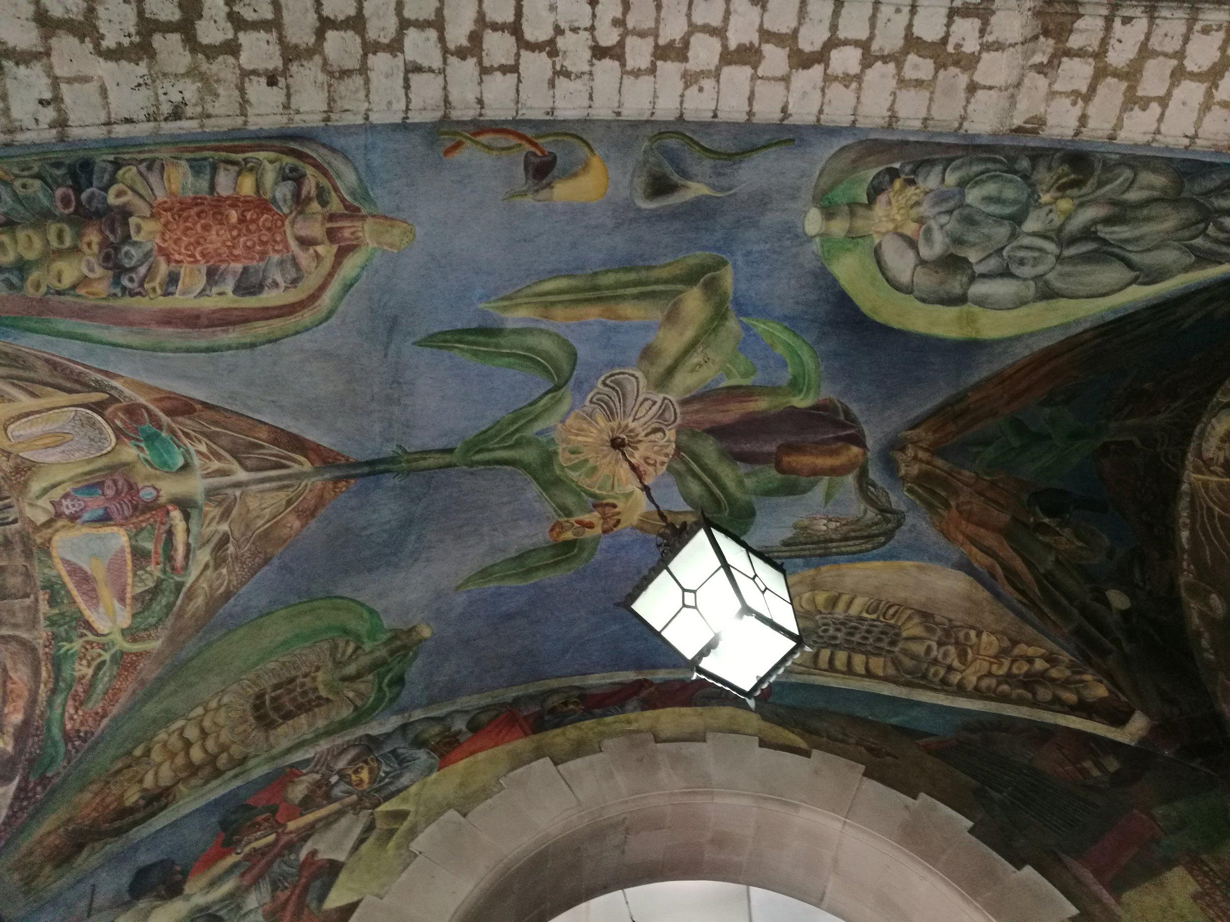 Art & Murals -